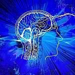 gesteigerte Gehirn-Leistung durch Quellwasser trinken